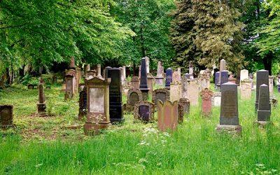 Führung über den Friedhof Schöne Aussicht